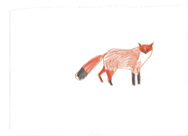 http://www.paulakempker.de/files/gimgs/th-16_fox5.jpg